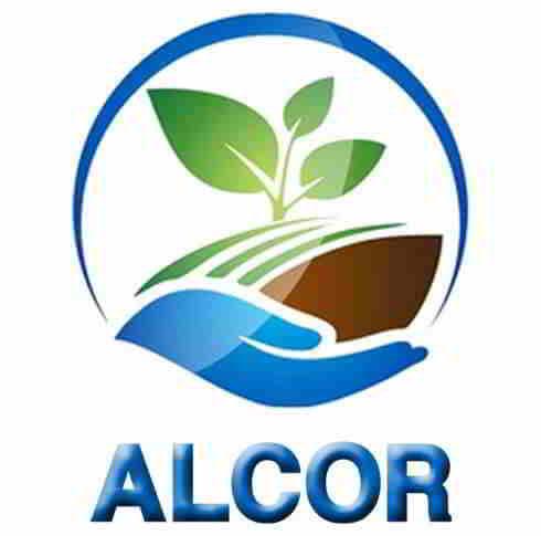 Alcor